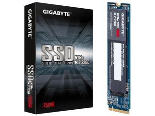 Gigabyte 256GB M.2 PCIe NVMe SSD [GP-GSM2NE3256GNTD] Εικόνα 1