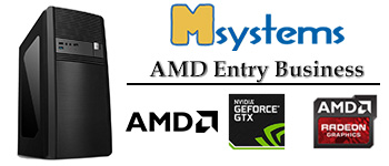 Msystems AMD Entry Business