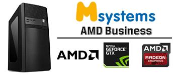Msystems AMD Business